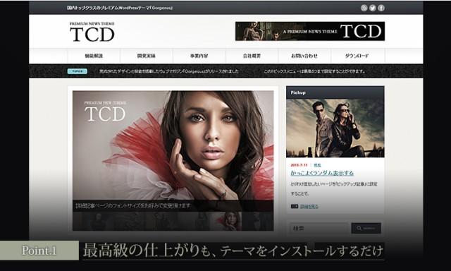 tcd013-point