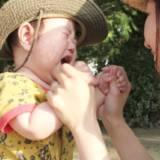 日本は子連れに親切。子供を産んで良かったこと。